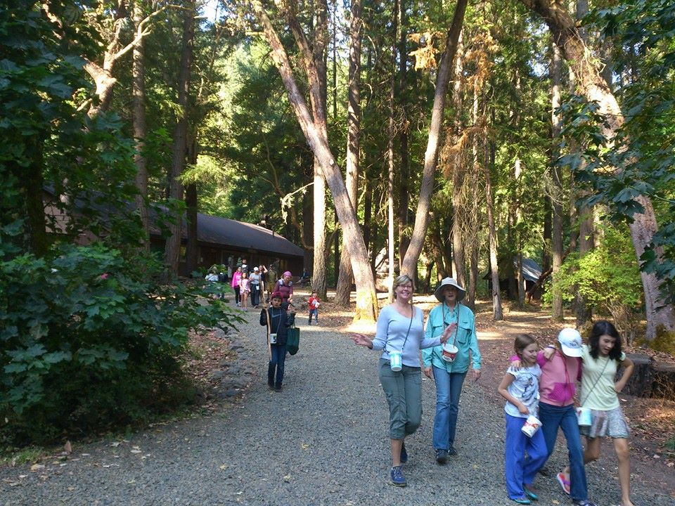 Adults and children walk along a rock path through a wooded setting